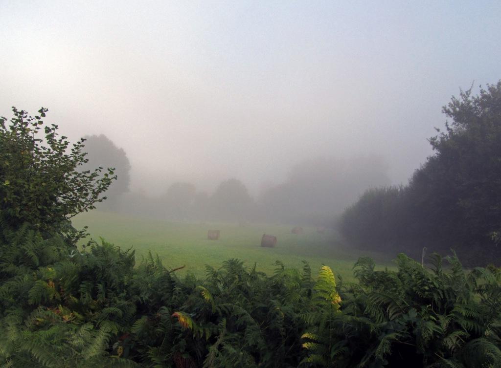 Вот так выглядит холодный французский туман